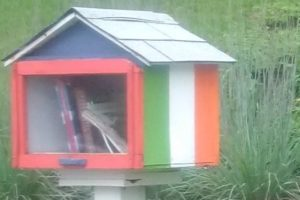 Little Library Eagle Scout Project